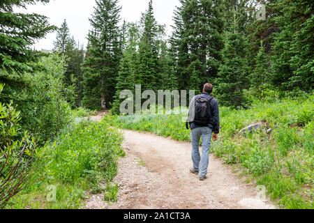 Albion Basin, Utah summer trail in 2019 season in Wasatch mountains with man walking with backpack on dirt road - Stock Photo