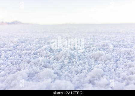 Macro closeup low angle ground level view on texture of Bonneville salt flats with wet salt on ground abstract with horizon - Stock Photo