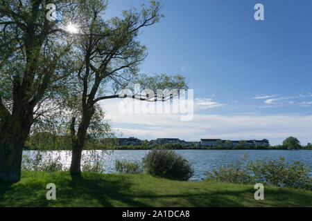 Canada, Ontario, Collingwood,  Yacht Club, a silent morning in the marina at the Collingwood Lake - Stock Photo