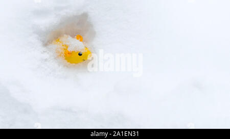 Object on the snow. Bright yellow rat in white snow. Copy space. Concept of new 2020 year. Chinese year of rat. Symbol of 2020 year. Graphic resources. Concept, background, idea. Animal of the year - Stock Photo