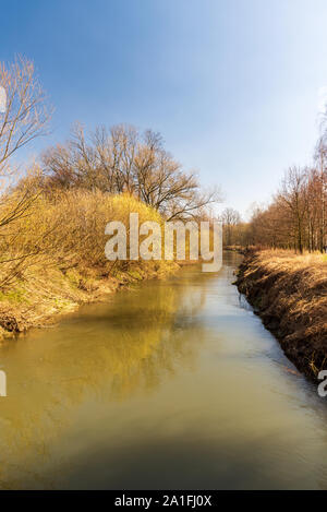 Odra river with trees around and clear sky above in early spring CHKO Poodri near Studenka town in Czech republic - Stock Photo