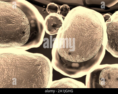 High quality 3d render of fat cells, cholesterol in a cells, field of cells, structure of the molecule, receptors on the cells surface - Stock Photo
