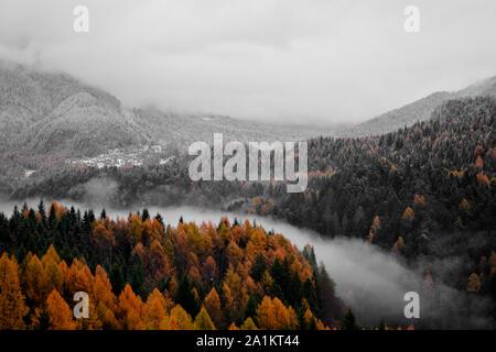 snow falls in altitude - Stock Photo