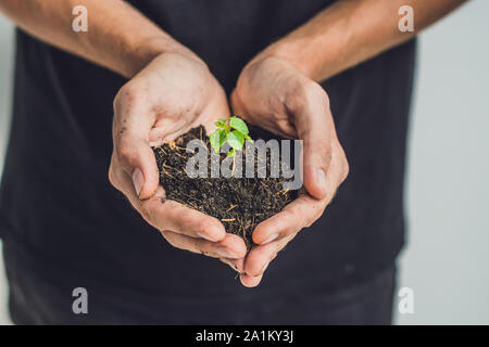 Hands holding young green plant, on black background. The concept of ecology, environmental protection. - Stock Photo