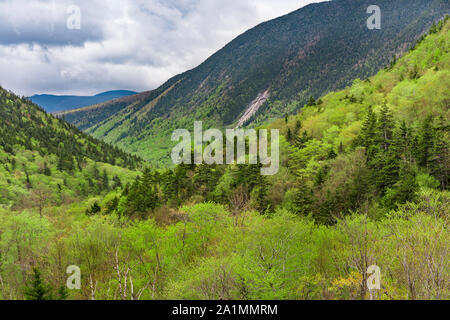A look at the notch, White Mountain National Forest, Crawford Notch State Park, Carroll Co., NH - Stock Photo