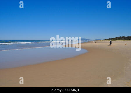 Coastal view with people and dogs on the beach, Port Macquarie, NSW, Australia - Stock Photo