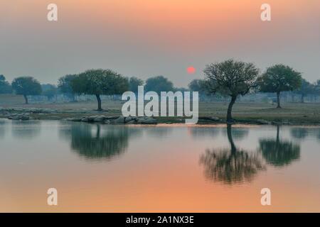 Gadisar lake in the morning at sunrise. Jaisalmer. Rajasthan. India - Stock Photo