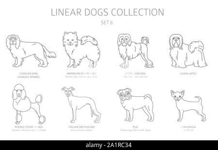 Simple line dogs collection isolated on white. Dog breeds. Flat style clipart set. Vector illustration - Stock Photo