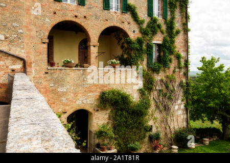 Detail of a Tuscan villa and grass courtyard. Creeping vines on the house. - Stock Photo