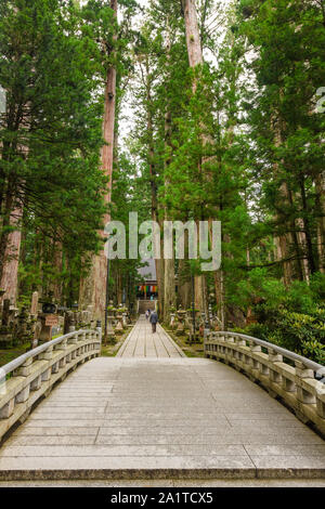 Wakayama, Japan - 23 July 2019: Ichinohashi stone bridge leading to Kobo Daishi's Mausoleum at the World Heritage Site of Koyasan. - Stock Photo