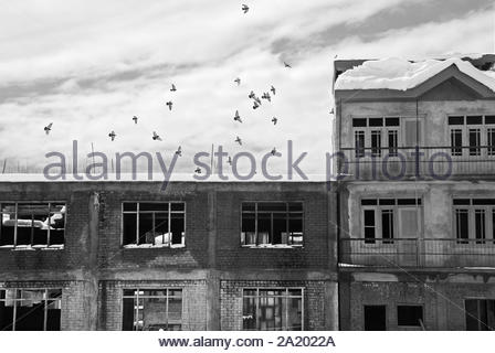 Kashmir, India.  March 12, 2014. - Stock Photo