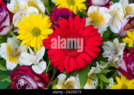 Bouquet of fresh flowers. Flower arrangement. Floral background, pattern. Bright colorful greeting card. Top view. - Stock Photo