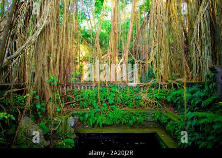 Dragon Bridge in Ubud Sacred Monkey Forest - Bali - Indonesia - Stock Photo