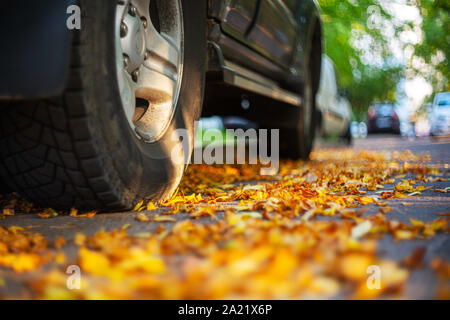 Car in a parking lot, rear wheel close up. Fallen leaves of trees on asphalt. Autumn background - Stock Photo