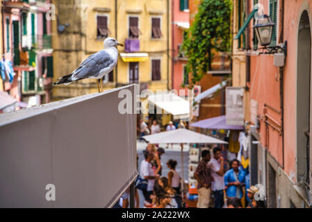 Riomaggiore, Cinque Terre, Italy - August 17, 2019: seagull on the eaves of a busy street, resort town in Europe on the shore of the Ligurian Sea - Stock Photo