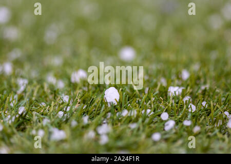 extreme weather hail stones with selective focus on the ground in south australia on 18th August 2019 - Stock Photo