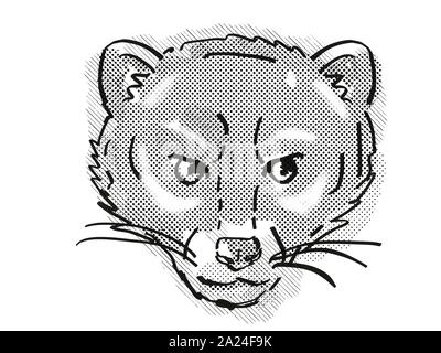 Retro cartoon style drawing of head of a Malayan Civet or Viverra Tangalunga , an endangered wildlife species on isolated white background done in bla - Stock Photo