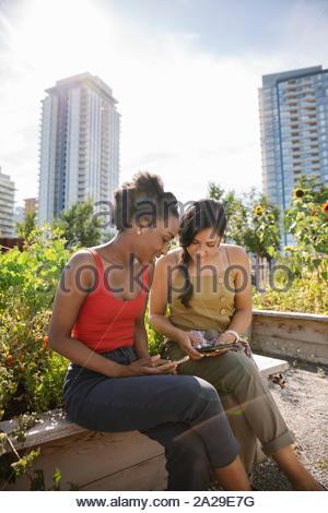 Young women friends using smart phones in sunny, urban community garden - Stock Photo