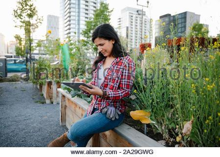 Woman using digital tablet in urban community garden - Stock Photo