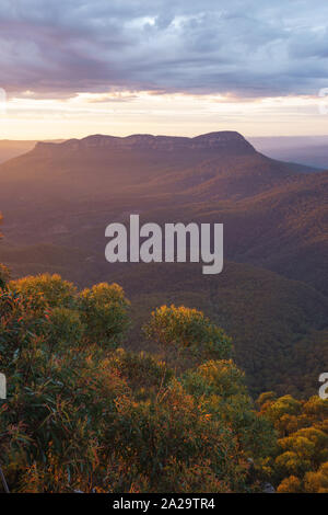 Kings Tableland in the Blue Mountains National Park, New South Wales, Australia - Stock Photo