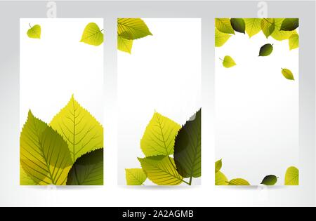 Fresh natural vertical banners with leafs and place for your content - Stock Photo