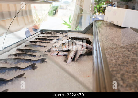 Fresh fish being sold on a street vendor in Greece, with main focus being on the fish getting prepared for sale and presented. - Stock Photo