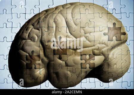 human brain and jigsaw puzzle with missing pieces - Alzheimer