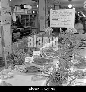 Die Fischabteilung in einem großen Lebensmittelgeschäft bietet Salzheringe an, Deutschland 1930er Jahre. The fish department at a grocery offering saltes herrings, Germany 1930s. - Stock Photo