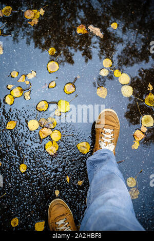 A man in jeans and cute shoes walking along an asphalt road on which yellow fallen leaves and puddles after the rain.