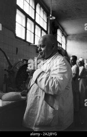 Eine wissenschaftliche Studie bzgl. der Trinkkur, Deutsches Reich 1930er Jahre. A scientific survey regarding the drinking cure, Germany 1930s. - Stock Photo