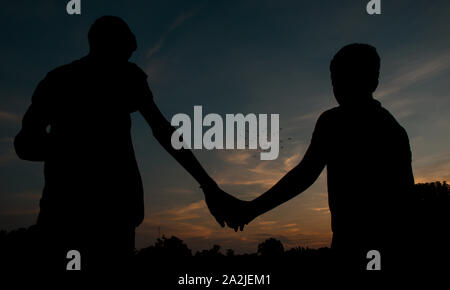 Two silhouette boys holding hands are looking flying birds. - Stock Photo