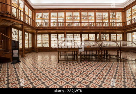 Coimbra, Portugal - Sept 6th 2019: Science Museum of the University of Coimbra. Recreation of Vandelli Cabinets - Stock Photo
