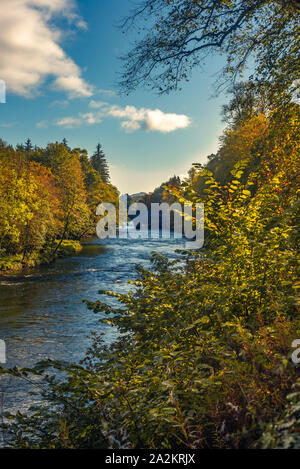 Fall Leaves on Trees on the Banks of the River Teith in Scotland with Doune Castle and Stone Bridge in the Background