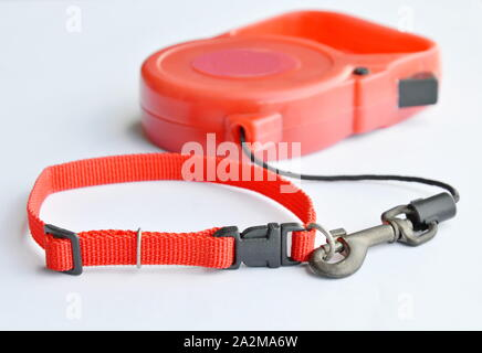 red color matching of automatic leash and nylon pet collar on white background - Stock Photo
