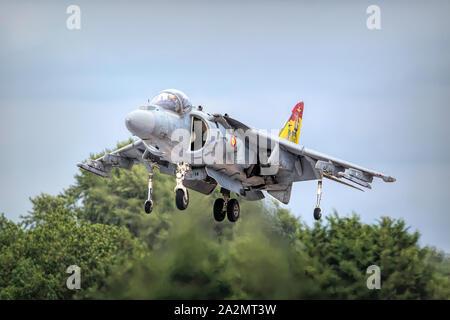 Armada Espanola Harrier AV-8B II - Stock Photo