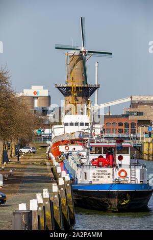 Schiedam, Netherlands, the river Nieuwe Maas, harbour basin, windmill, - Stock Photo