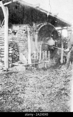 Negative - Kamarooka District, Victoria, circa 1928, A man stoking a boiler at a eucalyptus plant - Stock Photo