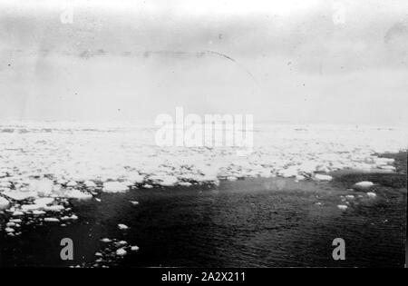 Photograph - by George Rayner, Biscoe Island, Antarctica, 1927-1939, Photograph taken during an expedition to Antarctica and sub-antarctic islands, circa 1934. Probably taken by George Rayner - Stock Photo
