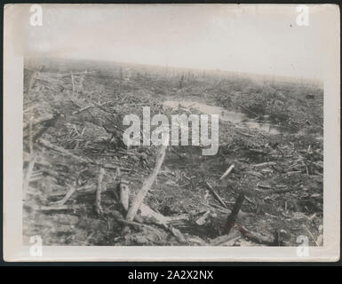 Photograph - 'Effects of Shellfire', Gueudecourt, France, World War I, May 1917, Photograph labelled 'Effects of Shellfire'. The photo is inscribed with the number E510 and dated 1916-1917. The Australian War Memorial holds the same photograph (numbered E00510), which it identifies as taken May 1917 in Gueudecourt, in the Picardie (Picardy) region, Somme Department, of France, in the vicinity of Albert-Bapaume. The Australian War Memorial explains: 'Immediately in front of - Stock Photo