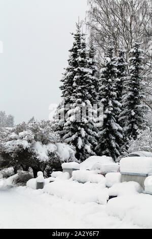 Lovely real life winter wonderland scene photographed during a winter day in Kuopio, Finland. There is huge amount of snow on the ground. - Stock Photo