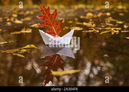 A paper boat floats in a puddle, an oak leaf instead of a sail, around the fallen autumn leaves lie. - Stock Photo