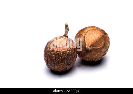 Closeup of soap nuts in isolated white background - Stock Photo
