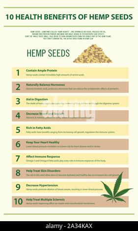 10 Health Benefits of Hemp Seeds vertical infographic illustration about cannabis as herbal medicine, healthcare and medical science vector. - Stock Photo
