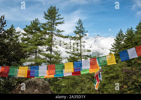 Prayer flags and forest on the way to Taktsang (Tiger's Nest), Bhutan - Stock Photo