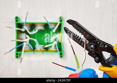Installation of home wiring. The bare ends of copper electric wires inside an electrical junction box. A handyman cuts the ends of a power cable using - Stock Photo