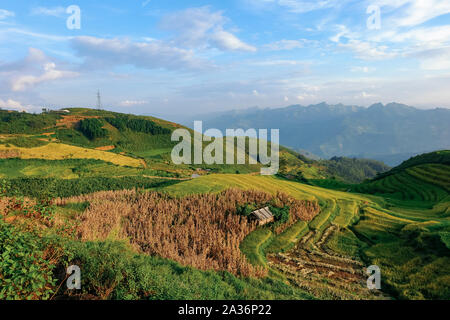 Beautiful landscape of rice field terraces in Ta Xua mountain. Royalty high quality stock image of rice field. Rice fields prepare the harvest. - Stock Photo