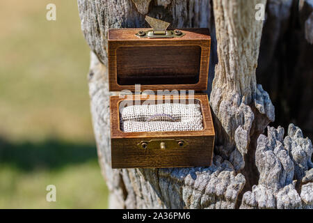 Bride white gold wedding ring with diamonds in dark wood rustic style box standing on an old tree trunk. With space. - Stock Photo