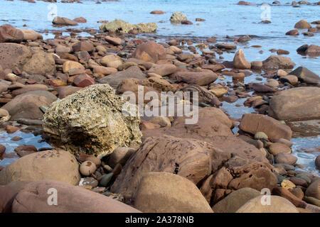 Kangaroo Island Australia, rocks at  Stokes Bay waters edge at low tide - Stock Photo