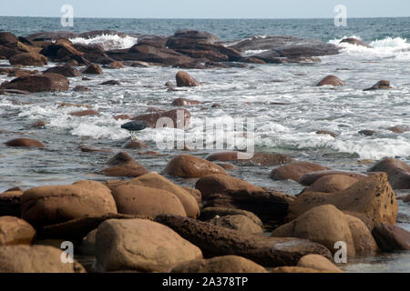 Kangaroo Island Australia, smoothed boulders rounded by water at Stokes Bay at low tide - Stock Photo