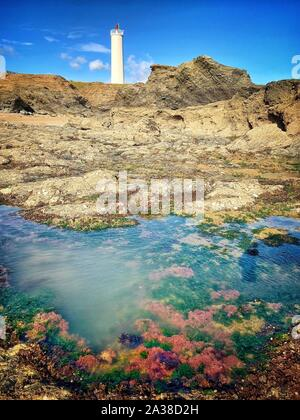 Coral rock pool in front of Grosse Terre lighthouse, Saint-Hilaire-de-Riez, Vendee, France - Stock Photo